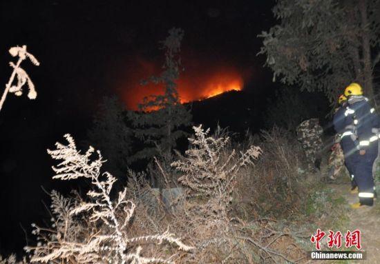 卫星森林火灾检测