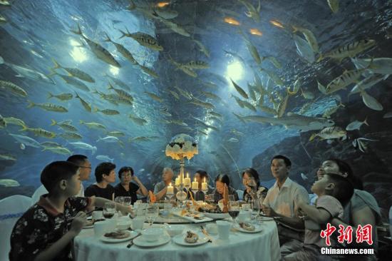 """9月1日晚,天津极地海洋世界,游客们在蔚蓝的海底隧道中感受""""舌尖""""上的美食。中新社发 佟郁 摄"""