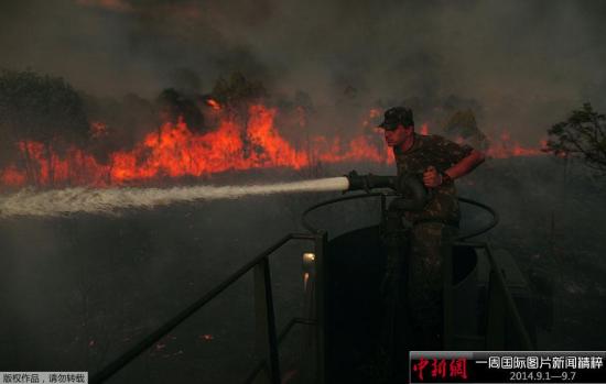 9月1日,巴西首都巴西利亚,高温和少雨的天气使得巴西火灾频发。巴西国家空间研究所表示,与去年同期相比巴西火灾次数增加了一倍。