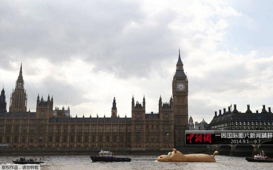 """9月2日,英国伦敦,大黄鸭之父Florentijn Hofman另一作品巨型河马 """"HippopoThames""""在泰晤士河""""游泳""""展出。"""