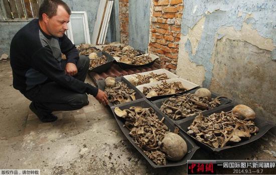 9月5日,乌克兰西部Volodymyr-Volynsky,波兰和乌克兰科学家发现一处墓穴,埋葬着约1000名斯大林时期的受害者,其中包括波兰士兵。
