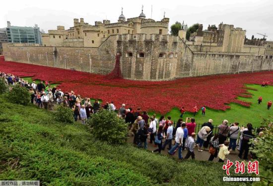 """当地时间2014年10月9日,英国伦敦,为了纪念第一次世界大战,英国在伦敦塔的城壕中""""种植""""陶瓷罂粟花,用每一朵花纪念一位一战中的逝者。"""