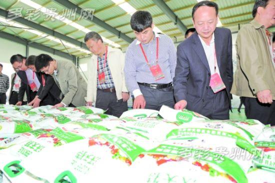 10月16日,观摩会代表在金正大生态科技工程有限公司考察。