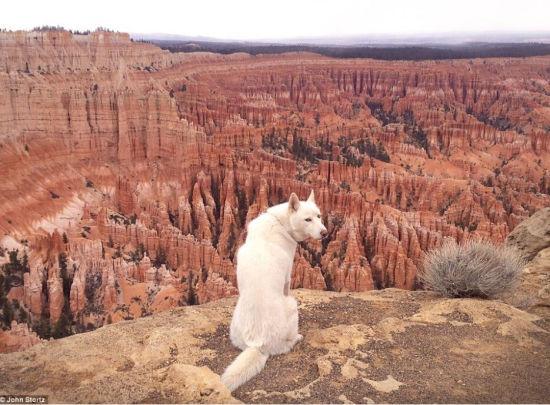 图为犹他州的布赖斯峡谷,以红色岩石地貌而著称,Wolfgang回头看摄像机找镜头。(网页截图)