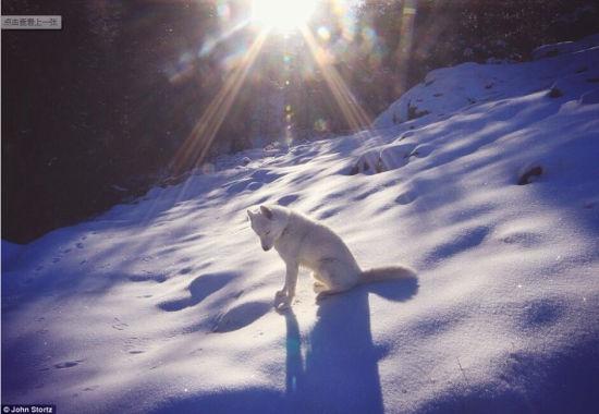 在大蒂顿国家公园,没有人际的完美雪地和温暖的阳光使这张照片看起来美极了。(网页截图)