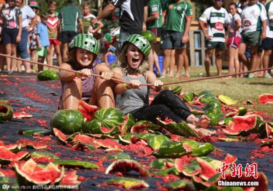 """当地时间2015年2月14号,澳大利亚昆士兰州内陆小镇金吉拉举办""""西瓜节"""",疯狂搞笑的滑西瓜比赛让人度过有趣难忘的节日,参赛者将双脚插入新鲜的西瓜中,然后从斜坡上滑下去。摔倒即被淘汰,可是想不被摔倒也很难。今年这一节日正好与情人节相遇,所以更增添了甜蜜味道。刚刚过去的周末共有一万多名游客涌入金吉拉镇,使用了总重月20吨的优质西瓜,体验这项极富创意的滑西瓜活动。 图片来源:CFP视觉中国"""
