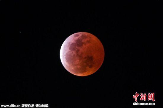 2015年4月4日,红月亮现深圳夜空。邓飞 摄 图片来源:东方IC 版权作品 请勿转载