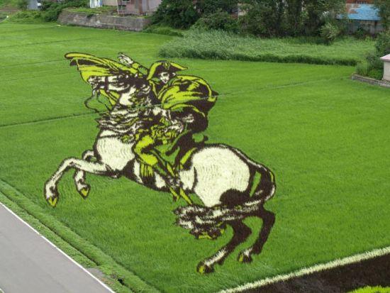 近日,又迎来了欣赏日本稻田画的时节。其图案包括日本国内外古今故事和人物、动漫形象等,2011年为了恢复因311大地震而受重创的日本旅游业,稻田画也加入了抗灾的内容。