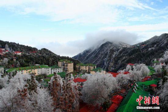 江西庐山急剧降温,加上水汽充足,形成了今年首场雾凇雨凇景观。 吴健 摄