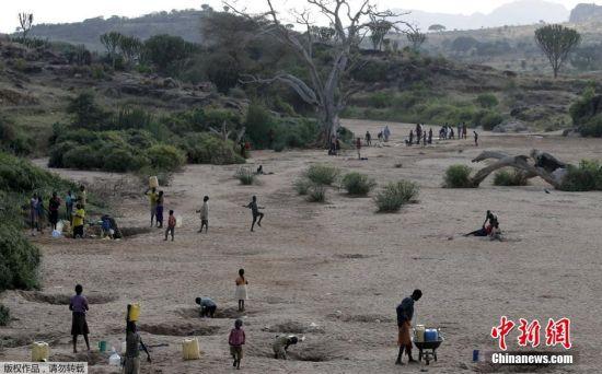 人们在一条干涸的河床边取水,卡拉莫贾地区干旱严重。