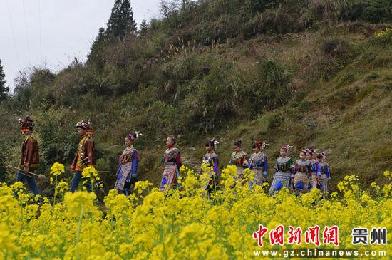 贵州省榕江县寨蒿镇寿洞村侗戏歌队走过油菜花地。