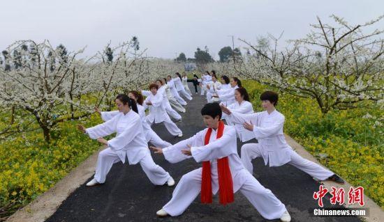 太极拳爱好者在桃花园练功。 徐世钊 摄