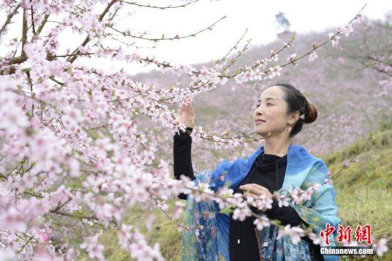游客踏春赏花。 徐世钊 摄