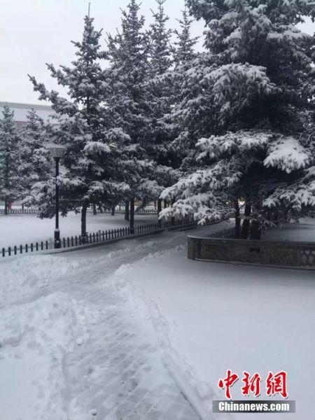 """3月17日,甘肃甘南境内一望无际的草原被大雪笼罩,一片白雪茫茫。主城区路面积雪深厚,居民纷纷出门赏雪,并通过朋友圈晒雪景写到""""春雪缓解旱情""""、""""瑞雪兆丰年""""等期盼。图为甘南州府合作市校园内雪景。 张勇 摄"""
