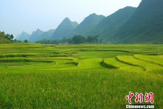 图为贵州六枝美景。