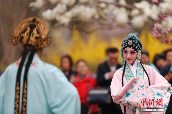 """3月31日,戏曲演员在北京国际雕塑公园玉兰花表演。今年,北京国际雕塑公园举办""""玉兰茶会"""",在继承中国优秀传统文化的基础上,巧妙融合时尚气息,将琴棋、书画、礼乐、茶席、戏曲、养生、服饰、诗会等多个类别汇聚,给北京国际雕塑公园玉兰文化节增添了几番古典与优雅的韵味。北京国际雕塑公园""""玉兰花苑""""占地5公顷,种植着8个品种5000余株玉兰,是北京规模最大的玉兰观赏园。中新社记者 盛佳鹏 摄"""