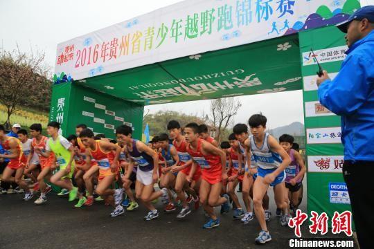 """3月30日,""""贵州动起来""""系列主题体育赛事、2016年贵定首届金海雪山全国最美花海公路赛在贵定开赛。 张伟 摄"""