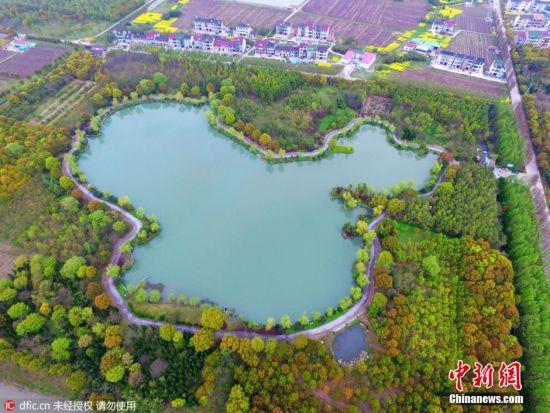 """2016年4月5日,上海,航拍镜头下,上海一人工湖现巨幅""""中国地图"""",独具匠心构思巧妙让人称奇。据悉,该人工湖占地面积245亩。人工湖面积为46亩,从地面看与普通湖无异,但在航拍视角下则呈现出一幅巨大的""""中国地图"""",湖形四周绿杨佳树环绕,配以逶迤曲折的休闲路,游人光顾舒适惬意、美不胜收。沈春琛 摄 图片来源:东方IC 版权作品 请勿转载"""