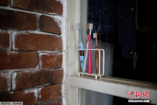 直树家的牙刷被简单的固定在墙上。