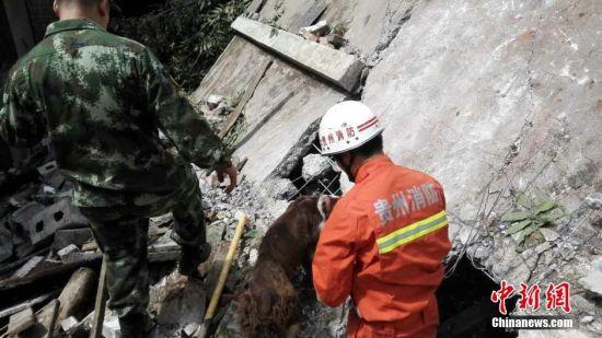 贵州省大方县政府网站7月1日通报,当日5时30分左右,受连日强降雨影响,大方县理化乡偏坡村金星组发生一起山体滑坡灾害。经初步核实,导致金星组10户29人被埋。经全力抢救,已救出6人送医。目前,现场救援工作正在紧张进行。中新社发 宗鑫 摄