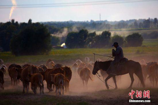 新疆哈巴河县牧歌如画似仙境