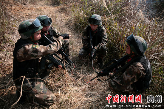 图为特战小组分配任务 李军 摄