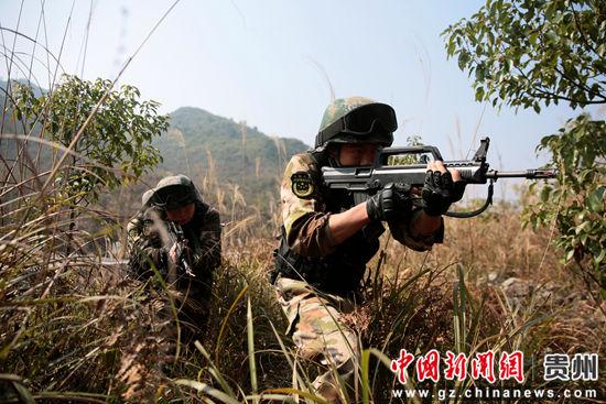 图为特战小组进行丛林搜索