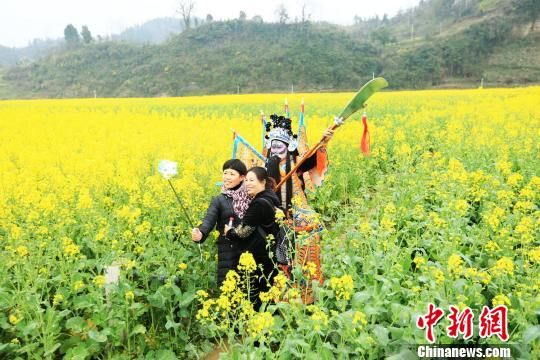 贵州省铜仁市碧江区瓦屋乡克兰寨古村落,万亩盛开的油菜花田吸引着中外游客踏青赏春。 段堂余 摄