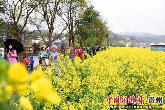 游客在绿道上漫步赏花 陈金 摄