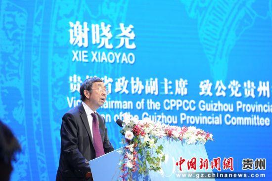 谢晓尧副主席讲话。