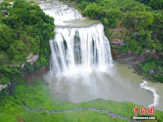 5月24日,俯瞰黄果树瀑布。受强降雨影响,位于贵州省安顺市的黄果树瀑布进入丰水期,壮观瀑布吸引游客前来观赏。 中新社记者 贺俊怡 摄
