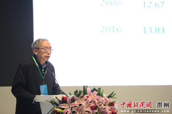 中国改革基金会国民研究所副所长王小鲁。