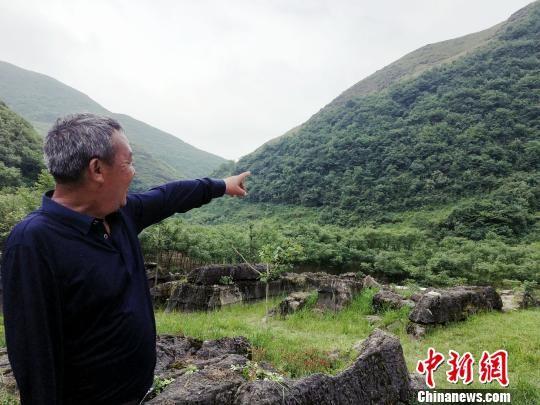 贵定县沿山镇底至村中药材基地管理人员张昭祥介绍种植情况。 杨云 摄