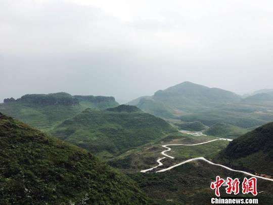 通往贵定县沿山镇底至村中药材基地的崎岖道路。 杨云 摄