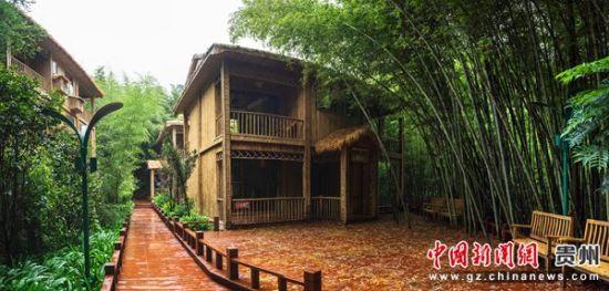 图为大洞竹海景区