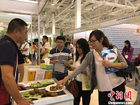 台湾民众品尝贵州修文猕猴桃。 易国琼 摄