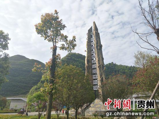 万峰湖风景区