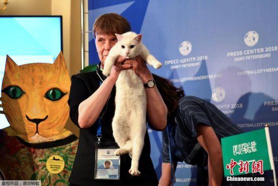 """名为Achilles的失聪猫咪今年将替代""""章鱼保罗"""",成为俄罗斯世界杯的""""官方预言家""""。"""