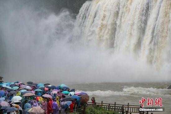 6月23日,贵州黄果树瀑布壮观景象吸引大批游客观赏。受近日持续降雨影响,位于贵州省安顺市的黄果树瀑布进入丰水期。 中新社记者 贺俊怡 摄