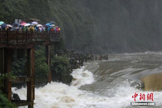 6月23日,游客在贵州黄果树瀑布观光栈道上游览。受近日持续降雨影响,位于贵州省安顺市的黄果树瀑布进入丰水期。 中新社记者 贺俊怡 摄