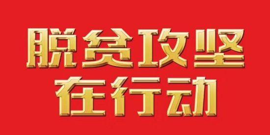 """pk10大小单双必赢计划:【脱贫攻坚在行动】""""乡愁经济""""让贵州遵义花茂村""""花繁叶茂"""""""