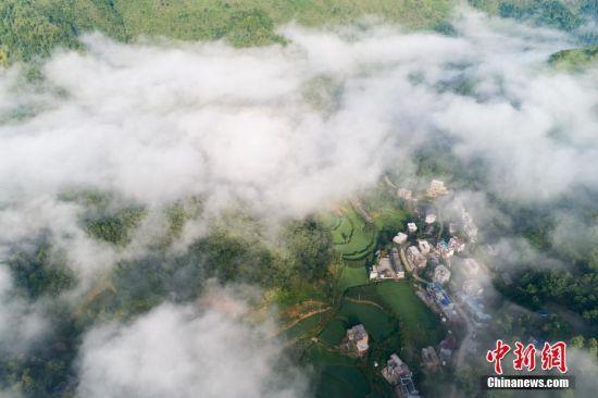 7月18日,无人机航拍晨雾中的贵州省紫云县坝弄布依寨。清晨,大雾环绕贵州布依族寨外群山,村寨在晨雾中若隐如现,美如仙境。中新社记者 贺俊怡 摄