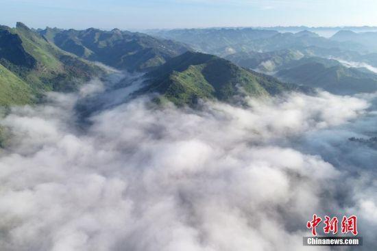 7月18日,无人机航拍贵州省紫云县坝弄布依寨外晨雾。清晨,大雾环绕贵州布依族寨外群山,如梦似幻。中新社记者 贺俊怡 摄