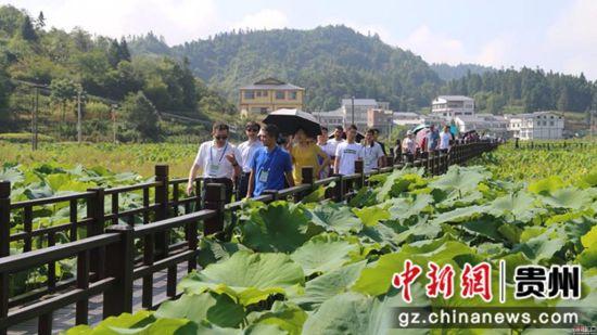 与会嘉宾在习水县进行走访调研 贵州省社科院科研处供图