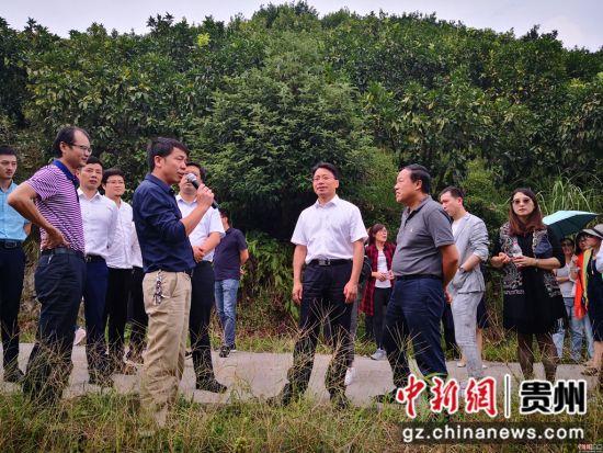 2018年9月10日至13日,杭州市企业家考察团一行41人继续赴黔东南州各地开展投资考察和结对帮扶活动。
