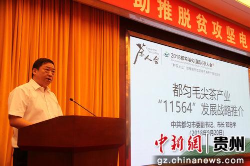 图为中共都匀市委副书记、市长邓忠学向大会推介都匀市毛尖茶产业发展战略。文勇 摄