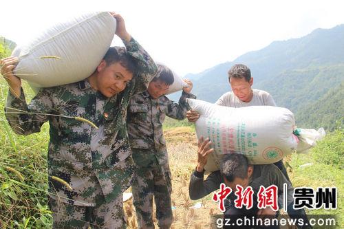 9月24日,贵州省望谟县新屯街道办纳包村党员在帮助贫困户搬运稻谷。