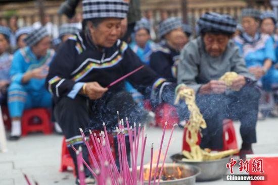 布依族老人在燃烧香猪进行祭山仪式。中新社记者 贺俊怡 摄