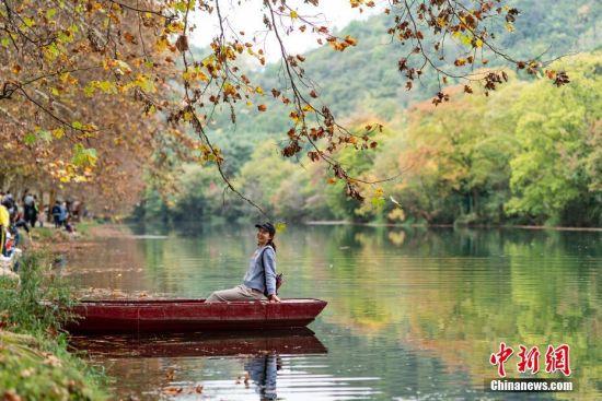 10月27日,贵阳花溪河畔的黄金大道法国梧桐树叶泛秋黄,美不胜收,吸引游客前来赏秋。 中新社记者 贺俊怡 摄