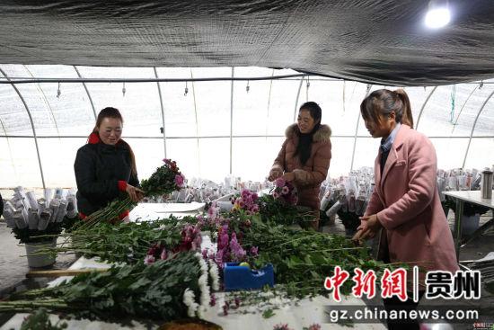 农户在包装鲜花